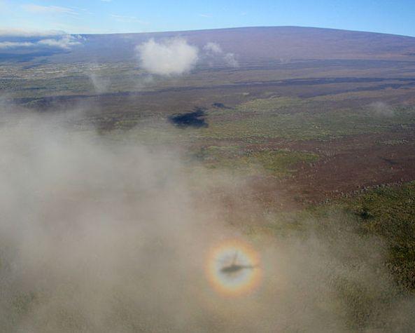 598px-Solar_Glory_with_helicopter_shadow_around_Mauna_Loa